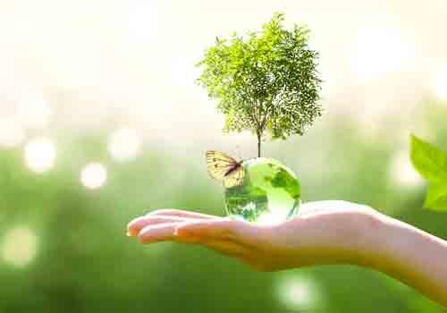 environnement-main-bulle